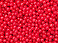 Nanking Cherry Fruits Background Royalty Free Stock Photo
