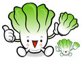 Napa cabbage characters to promote vegetable selling vegetable character design series Royalty Free Stock Photography