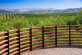 Napa Valley Vista Royalty Free Stock Photography
