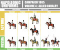 Napoleonic uniforms illustration chart infographic campaign volume russian and austrian cavalry on white background Stock Photography