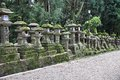 Nara japan kansai region old city on unesco world heritage site old mossy stone lanterns on the way leading to kasuga shrine Royalty Free Stock Photo