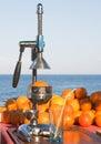 Naranjas y prensa manual Foto de archivo