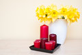 Narcissus and candles bouquet in vase red still life composition Stock Photos