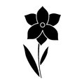Narcissus flower spring season pictogram