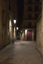 Narrow alley illuminated by street lamps at night