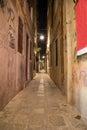 Narrow Allys in Venice at Night Royalty Free Stock Photo
