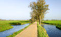 Narrow bike path in a dutch polder area between the water and the meadows the netherlands it s sunny day the fall season Stock Photo