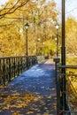 Narrow bridge Royalty Free Stock Photo