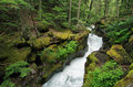 Narrow canyon of Avalanche Gorge Royalty Free Stock Photo