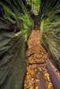 Narrow crevice a natural in the rock is colored by green plant life and fallen autumn leaves at the ledges in ohio s cuyahoga Royalty Free Stock Images