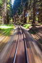Narrow gauge railroad track Stock Images