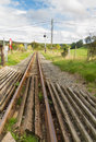 Narrow Gauge Railway Or Railro...