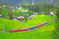 Narrow gauge railway. Switzerland. Stock Photography