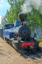 Narrow gauge steam locomotive. Royalty Free Stock Photos
