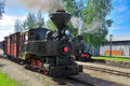 Narrow gauge steam train. Royalty Free Stock Photography