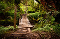 Narrow old wooden bridge Stock Photos