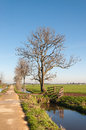 Narrow road in a polder landscape Royalty Free Stock Photo