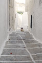 Narrow street in Parikia, Cyclades Stock Photography