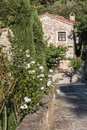 Narrow Street with Stone Flooring and White Flowers in Italian Village and House with Stone Facade in background Royalty Free Stock Photo