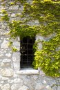Window overtaken by green vines in an old building in European c Royalty Free Stock Photo