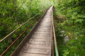 Narrow wooden bridge Royalty Free Stock Photo