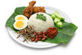 Nasi lemak coconut milk rice malaysian cuisine isolated on white background Royalty Free Stock Photography