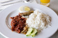 Nasi lemak traditional malay famous and common food named Stock Images