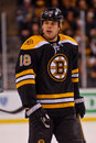 Nathan Horton Boston Bruins Royalty Free Stock Photography