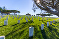 National Cemetery Royalty Free Stock Photo