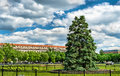 The National Christmas Tree in front of the White House - Washington, DC Royalty Free Stock Photo