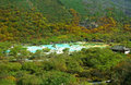 National geological park:huanglong scenery in china huanglong multi colored pools of beautiful Stock Photo