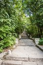Stone stairs of the Madara national historical archeological reserve Royalty Free Stock Photo