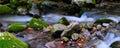 National park Abruzzo Lazio Molise Royalty Free Stock Photo