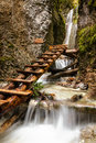 National park slovakian paradise slovakia mountain stream with ladder in canyon Stock Photo