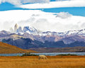 The national park torres del paine lake laguna azul in mountains on shore of lake grazing horses impressive landscape in Royalty Free Stock Photography
