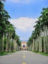 National Taiwan University - the Royal Palm Blvd. Stock Photo