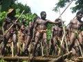 Natives' ceremony in Vanuatu Royalty Free Stock Photos