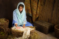 Nativity scene in manger Royalty Free Stock Photo