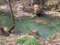 Natura cascada biger romania wather fall Royalty Free Stock Photo