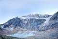Natura selvaggia in rocky mountains angel glacier jasper national park Immagini Stock