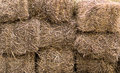 Natural background dry hay stacked in a block livestock feed wall Royalty Free Stock Photo