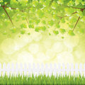 Natural background fresh spring nature vector Royalty Free Stock Image