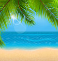 Natural Background with Palm Leaves and Beach