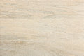 Natural Bleached Wood Panel Close-up Texture Royalty Free Stock Photo