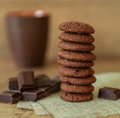Natural chocolate cookies with cranberries and hazelnuts.