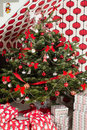 Natural Chrismas tree in living room Royalty Free Stock Photo