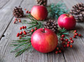 Natural christmas decoration with red apples berries cones and pine tree branches on a wooden background Stock Photography