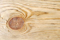 Natural Color Old Wood Grain S...