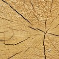 Natural Color Old Wood Grain Square Frame Texture Close Up Royalty Free Stock Photo