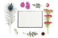 Natural composition with notebook on white background Royalty Free Stock Photo